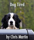 Dog Tired Article