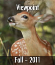 Viewpoint Fall 11