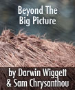 Beyond The Big Picture Icon